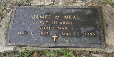 NEAL (VETERAN WWI), JAMES M. - Lawrence County, Arkansas | JAMES M. NEAL (VETERAN WWI) - Arkansas Gravestone Photos