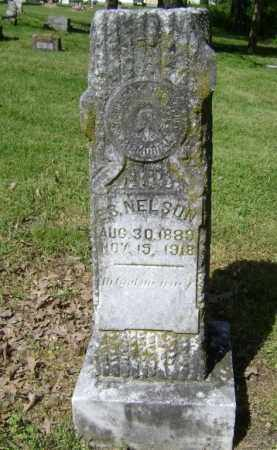 NELSON, E. S. - Lawrence County, Arkansas | E. S. NELSON - Arkansas Gravestone Photos