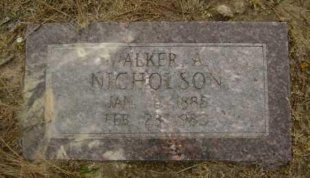 NICHOLSON, WALKER A. - Lawrence County, Arkansas   WALKER A. NICHOLSON - Arkansas Gravestone Photos