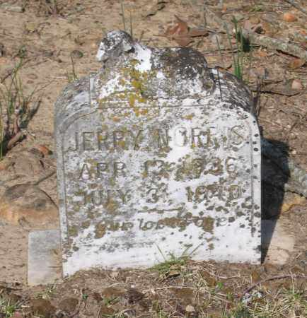 NORRIS, JERRY - Lawrence County, Arkansas | JERRY NORRIS - Arkansas Gravestone Photos