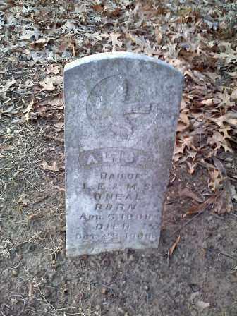 O'NEAL, ALICE - Lawrence County, Arkansas | ALICE O'NEAL - Arkansas Gravestone Photos