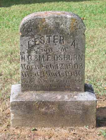 OSBURN, LESTER A. - Lawrence County, Arkansas | LESTER A. OSBURN - Arkansas Gravestone Photos