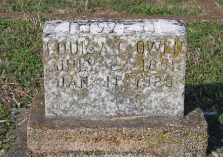 OWEN, LOUISA C. - Lawrence County, Arkansas | LOUISA C. OWEN - Arkansas Gravestone Photos