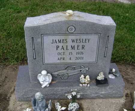 PALMER, JAMES WESLEY - Lawrence County, Arkansas   JAMES WESLEY PALMER - Arkansas Gravestone Photos
