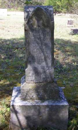 PARK, MAGGIE - Lawrence County, Arkansas | MAGGIE PARK - Arkansas Gravestone Photos