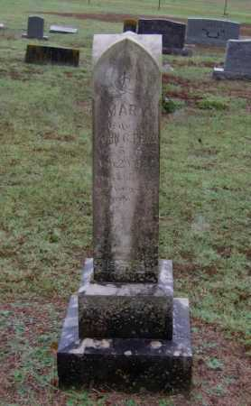 "FORTENBERRY PENN, MARY MARTHA ""POLLY"" - Lawrence County, Arkansas 