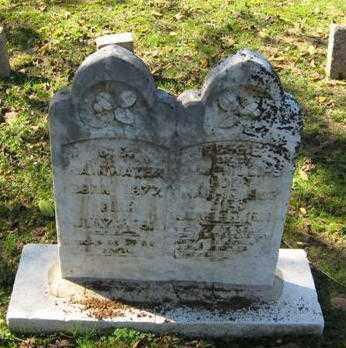 "LINDLEY, ELIZABETH ""BEEDIE"" - Lawrence County, Arkansas | ELIZABETH ""BEEDIE"" LINDLEY - Arkansas Gravestone Photos"