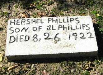 PHILLIPS, WALTER HERSHEL - Lawrence County, Arkansas | WALTER HERSHEL PHILLIPS - Arkansas Gravestone Photos