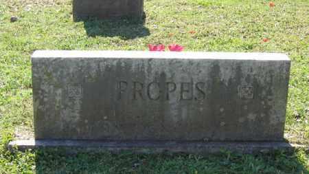 PROPES FAMILY STONE,  - Lawrence County, Arkansas |  PROPES FAMILY STONE - Arkansas Gravestone Photos