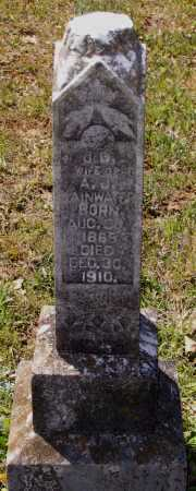 RAINWATER, CLEMENTINE J. - Lawrence County, Arkansas | CLEMENTINE J. RAINWATER - Arkansas Gravestone Photos