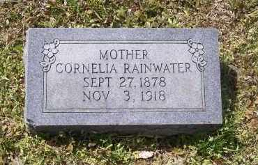 RAINWATER, CORNELIA - Lawrence County, Arkansas | CORNELIA RAINWATER - Arkansas Gravestone Photos