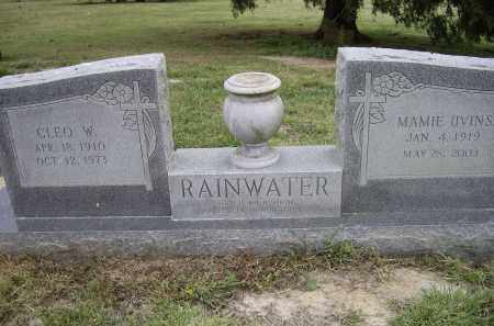 RAINWATER, CLEO WALTER - Lawrence County, Arkansas | CLEO WALTER RAINWATER - Arkansas Gravestone Photos