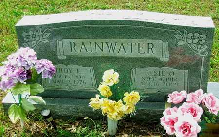 RAINWATER, TROY FRANCIS - Lawrence County, Arkansas | TROY FRANCIS RAINWATER - Arkansas Gravestone Photos