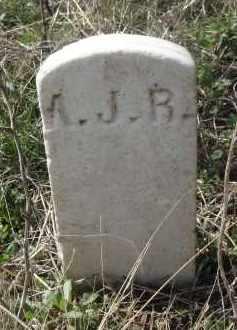 RANEY, ANDREW JACKSON - Lawrence County, Arkansas | ANDREW JACKSON RANEY - Arkansas Gravestone Photos