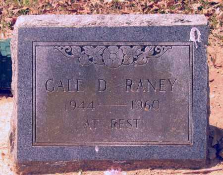RANEY, GALE DEE - Lawrence County, Arkansas | GALE DEE RANEY - Arkansas Gravestone Photos
