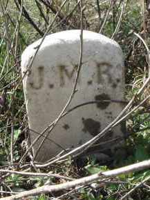 RANEY, JAMES M. - Lawrence County, Arkansas | JAMES M. RANEY - Arkansas Gravestone Photos