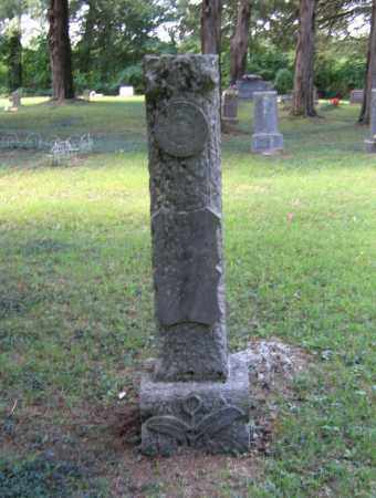 REYNOLDS, JAMES MICHAEL - Lawrence County, Arkansas | JAMES MICHAEL REYNOLDS - Arkansas Gravestone Photos