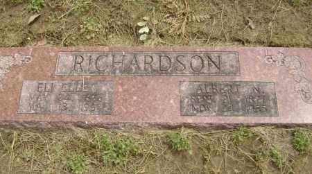 PHILLIPS RICHARDSON, ELI ELLEN - Lawrence County, Arkansas | ELI ELLEN PHILLIPS RICHARDSON - Arkansas Gravestone Photos
