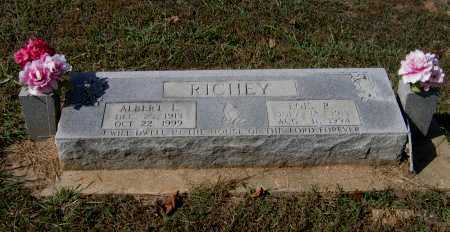 RICHEY, ALBERT LEO - Lawrence County, Arkansas | ALBERT LEO RICHEY - Arkansas Gravestone Photos