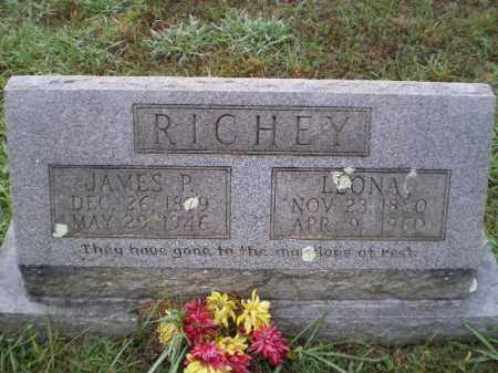 OLDHAM RICHEY, LEONA - Lawrence County, Arkansas | LEONA OLDHAM RICHEY - Arkansas Gravestone Photos