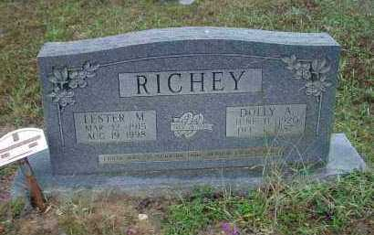 RAINWATER RICHEY, DOLLY ARENE - Lawrence County, Arkansas | DOLLY ARENE RAINWATER RICHEY - Arkansas Gravestone Photos