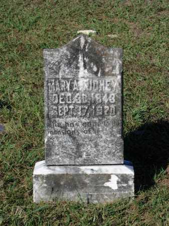 SINGLETON RICHEY, MARY AMANDA - Lawrence County, Arkansas | MARY AMANDA SINGLETON RICHEY - Arkansas Gravestone Photos