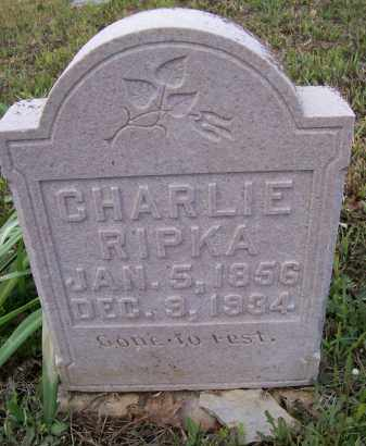 RIPKA, CHARLIE - Lawrence County, Arkansas | CHARLIE RIPKA - Arkansas Gravestone Photos