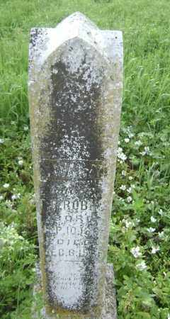ROBINS, SUVANAH - Lawrence County, Arkansas | SUVANAH ROBINS - Arkansas Gravestone Photos