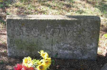 SEGRAVES, SUSAN ALICE - Lawrence County, Arkansas | SUSAN ALICE SEGRAVES - Arkansas Gravestone Photos
