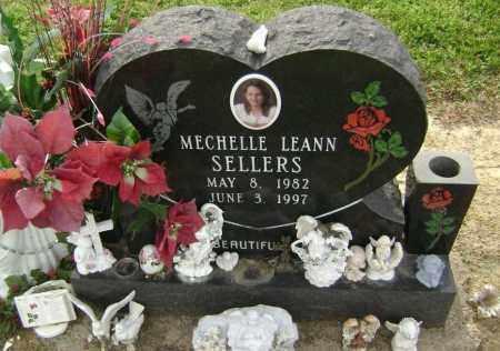 SELLERS, MECHELLE LEANN - Lawrence County, Arkansas | MECHELLE LEANN SELLERS - Arkansas Gravestone Photos