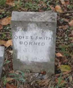 SMITH, ODIS L. - Lawrence County, Arkansas | ODIS L. SMITH - Arkansas Gravestone Photos