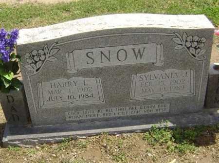 SNOW, SYLVANIA JANE - Lawrence County, Arkansas | SYLVANIA JANE SNOW - Arkansas Gravestone Photos