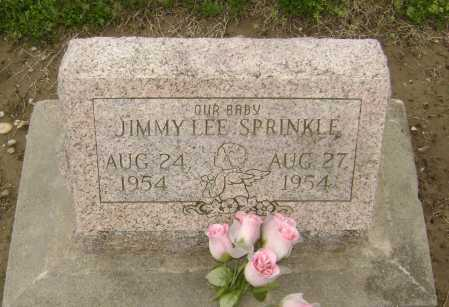 SPRINKLE, JIMMY LEE - Lawrence County, Arkansas | JIMMY LEE SPRINKLE - Arkansas Gravestone Photos