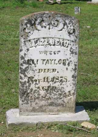 STEADMAN, ELIZABETH EMELINE - Lawrence County, Arkansas | ELIZABETH EMELINE STEADMAN - Arkansas Gravestone Photos