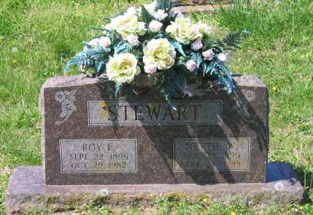 STEWART, ROY FOSTER - Lawrence County, Arkansas | ROY FOSTER STEWART - Arkansas Gravestone Photos
