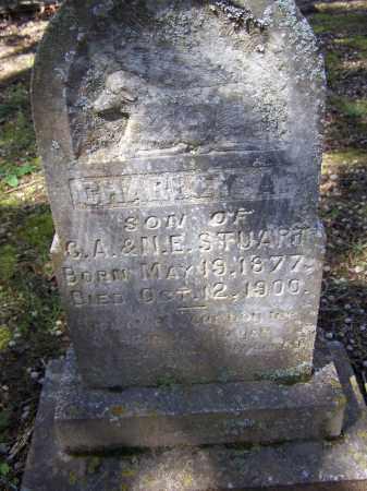 "STUART, CHARLES AUGUSTUS ""CHARLEY"" - Lawrence County, Arkansas | CHARLES AUGUSTUS ""CHARLEY"" STUART - Arkansas Gravestone Photos"
