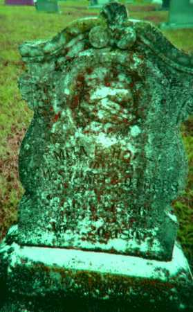 "SLOAN STUART, EMMA ELECTA ""AMY"" - Lawrence County, Arkansas 