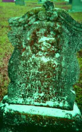 "SLOAN STUART, EMMA ELECTA ""AMY"" - Lawrence County, Arkansas | EMMA ELECTA ""AMY"" SLOAN STUART - Arkansas Gravestone Photos"