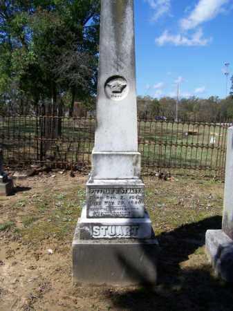 STUART, PITTMAN CICERO - Lawrence County, Arkansas | PITTMAN CICERO STUART - Arkansas Gravestone Photos