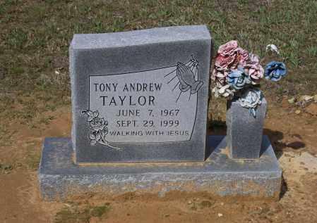 TAYLOR, TONY ANDREW - Lawrence County, Arkansas | TONY ANDREW TAYLOR - Arkansas Gravestone Photos