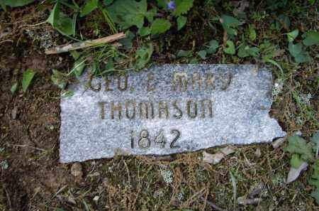 THOMASON, GEORGE W. AND MARY SILVINIA - Lawrence County, Arkansas | GEORGE W. AND MARY SILVINIA THOMASON - Arkansas Gravestone Photos