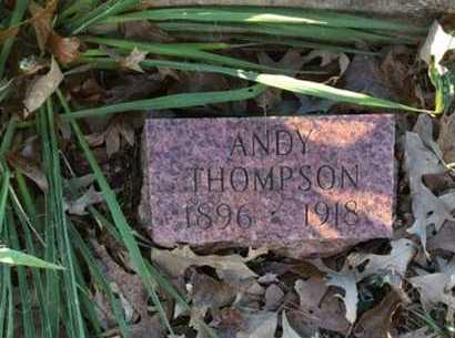 "THOMPSON, ANDREW JACKSON ""ANDY"" - Lawrence County, Arkansas 