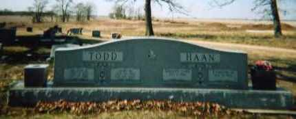 TODD-HAAN FAMILY STONE,  - Lawrence County, Arkansas |  TODD-HAAN FAMILY STONE - Arkansas Gravestone Photos