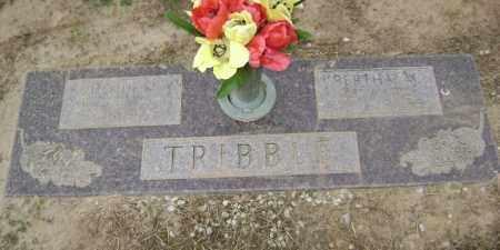 TRIBBLE, CLAUDE - Lawrence County, Arkansas   CLAUDE TRIBBLE - Arkansas Gravestone Photos