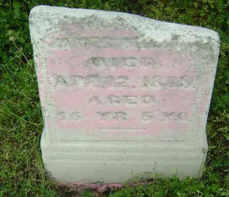 MILTON, JAMES - Lawrence County, Arkansas | JAMES MILTON - Arkansas Gravestone Photos