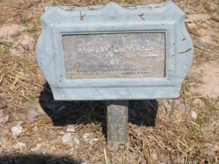 VINSON, EARNEST D. - Lawrence County, Arkansas | EARNEST D. VINSON - Arkansas Gravestone Photos