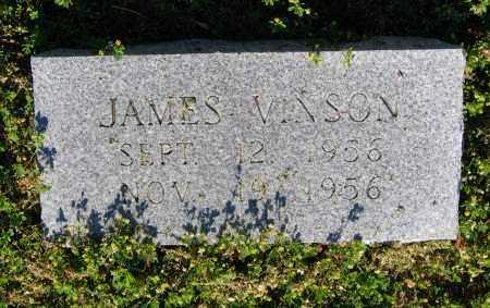VINSON, JAMES - Lawrence County, Arkansas | JAMES VINSON - Arkansas Gravestone Photos