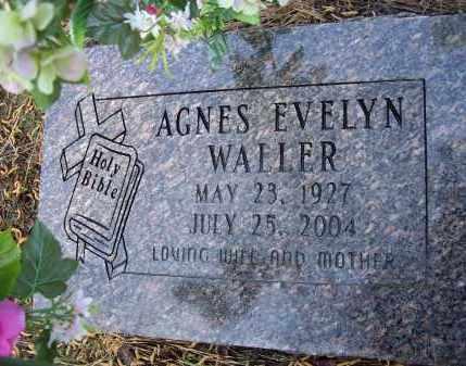 WALLER, AGNES EVELYN - Lawrence County, Arkansas | AGNES EVELYN WALLER - Arkansas Gravestone Photos