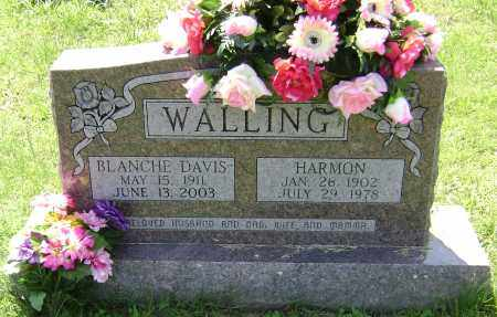 DAVIS WALLING, OTELLA BLANCHE - Lawrence County, Arkansas | OTELLA BLANCHE DAVIS WALLING - Arkansas Gravestone Photos