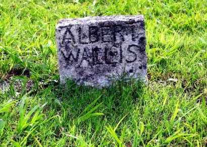 WALLIS, ALBERT B. - Lawrence County, Arkansas | ALBERT B. WALLIS - Arkansas Gravestone Photos